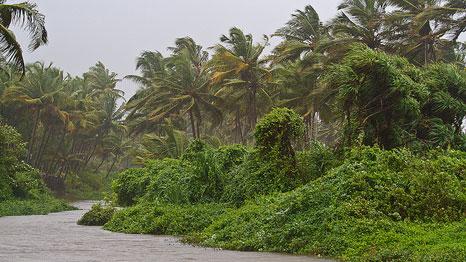 Monsoon in November Heat inDecember